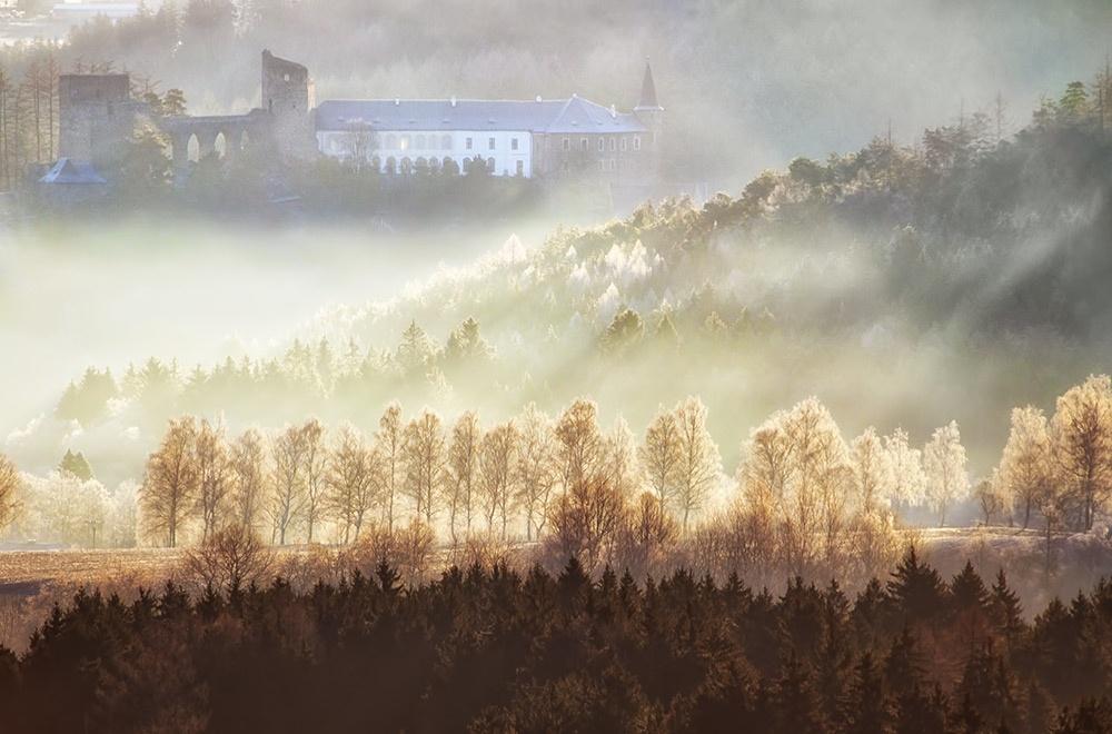 1. místo v soutěži ZOO Plzeň | Fanouš fotografie